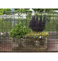 FLORAWORLD Dekorzaun-Matte, HxL: 100 x 250 cm, grün-Thumbnail