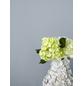 ALPINA Dispersionsfarbe »Feine Farben«, Steinblaue Schönheit, matt-Thumbnail