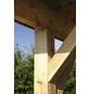 KIEHN-HOLZ Doppelcarport »KH 202«, Außenmaß BxT: 604 x 510 cm, natur-Thumbnail
