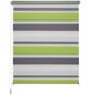 LIEDECO Doppelrollo »Mini Tricolor«, grau/weiß/grün, Polyester-Thumbnail
