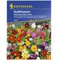 KIEPENKERL Duftblumenmix Einjährig, Samen, Blüte: mehrfarbig-Thumbnail