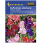 KIEPENKERL Duftwicken, Lathyrus odoratus, Samen, Blüte: mehrfarbig-Thumbnail