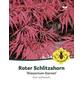 Dunkelroter Schlitzahorn, Acer palmatum »Dissectum Garnet«, Blattfarbe rot/schwarz-Thumbnail