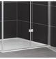HOME DELUXE Duschabtrennung B x H: 100 x 190 cm, Sicherheitsglas-Thumbnail