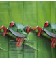 KLEINE WOLKE Duschvorhang B x H: 180 x 200 cm, Tiere-Thumbnail