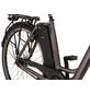 """PROPHETE E-Bike, 28 """", 7-Gang-Thumbnail"""