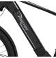 "FISCHER FAHRRAEDER E-Bike All-Terrain »TERRA 5.0i«, 29"", 10-Gang, 14 Ah, Diamant-Thumbnail"