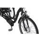 "PROPHETE E-Bike »Cargo 3R 20.ESL.10«, 26"", 3-Gang, 13.7 Ah-Thumbnail"