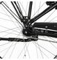 """FISCHER FAHRRAEDER E-Bike City »CITA 4.1i«, 26"""", 7-Gang, 11.6 Ah-Thumbnail"""