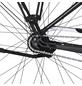 """FISCHER FAHRRAEDER E-Bike City »CITA 5.0i«, 28"""", 7-Gang, 11.6 Ah-Thumbnail"""