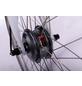 """LLOBE E-Bike City »Motion 2.0«, 28"""", 7-Gang, 10.4 Ah-Thumbnail"""