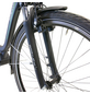 "HAWK E-Bike »City Wave Steps«, Schwarz 28 "", 7-gang, 14ah-Thumbnail"