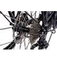 """CHRISSON E-Bike »E-Actourus«, 28"""", 10-Gang, 11 Ah, Diamant-Thumbnail"""