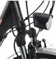 """CHRISSON E-Bike »E-Gent«, 28"""", 7-Gang, 13.4 Ah-Thumbnail"""