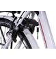 """CHRISSON E-Bike »E-Gent«, 28"""", 8-Gang, 13 Ah-Thumbnail"""