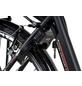 """CHRISSON E-Bike »E-Lady«, 28"""", 7-Gang, 13 Ah-Thumbnail"""