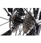 """CHRISSON E-Bike »E-ROUNDER«, 28"""", 9-Gang, 11 Ah-Thumbnail"""