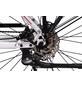 """CHRISSON E-Bike »E-ROUNDER«, 28"""", 9-Gang, 11 Ah, Trapez-Thumbnail"""
