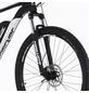 """FISCHER FAHRRAEDER E-Bike »EM 1724«, 29 """", 24-Gang, 8792 Ah-Thumbnail"""