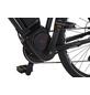 "PROPHETE E-Bike »Endecker Speed«, 28 "", 10-Gang, 12.8 Ah-Thumbnail"