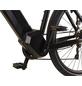 "PROPHETE E-Bike »Entdecker 20.ETT.20«, 28"", 9-Gang, 16 Ah, Diamant-Thumbnail"