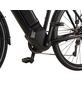 "PROPHETE E-Bike »Entdecker 20.ETT.30«, 28"", 10-Gang, 16 Ah, Diamant-Thumbnail"