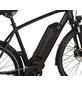 """PROPHETE E-Bike »Entdecker«, 28 """", 10-Gang, 16 Ah-Thumbnail"""
