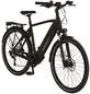 """PROPHETE E-Bike »Entdecker«, 28 """", 9-Gang, 16 Ah-Thumbnail"""