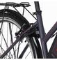 """FISCHER FAHRRAEDER E-Bike »ETD 1806«, 28"""", 24-Gang, 8.8 Ah-Thumbnail"""