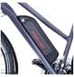 """FISCHER FAHRRAEDER E-Bike »ETD 1806«, 28 """", 8-Gang, 8.8 Ah-Thumbnail"""