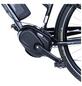 """FISCHER FAHRRAEDER E-Bike »ETD 1861«, 28 """", 10-Gang, 11604 Ah-Thumbnail"""