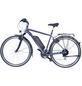 """FISCHER FAHRRAEDER E-Bike »ETH 1806«, 28"""", 8-Gang, 8.8 Ah, Diamant-Thumbnail"""