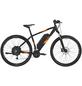"REX E-Bike Mountainbike, 29 "", 27-Gang, 10.4 Ah-Thumbnail"