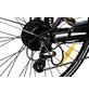 "MAXTRON E-Bike »MT-1 + MT-2«, 28"", 8-Gang, 11.6 Ah-Thumbnail"
