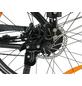 "MAXTRON E-Bike »MT-11«, 28 "", 8-Gang, 11.6 Ah-Thumbnail"