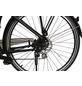 """MAXTRON E-Bike »MT-14X«, 28"""", 8-Gang, 14 Ah-Thumbnail"""