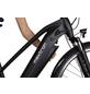 "MAXTRON E-Bike »MT-14X«, 28"", 8-Gang, 14 Ah, Trapez-Thumbnail"