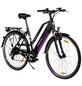 "MAXTRON E-Bike »MT-2«, 28"", 8-Gang, 11.6 Ah-Thumbnail"