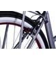 "LLOBE E-Bike »Rosendaal 2«, 28"", 3-Gang, 13.2 Ah-Thumbnail"