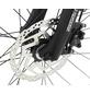 """PROPHETE E-Bike Trekking, 28 """", 10-Gang-Thumbnail"""