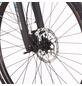 """FISCHER FAHRRAEDER E-Bike »Trekking«, 28 """", 10-Gang, 11.6Ah-Thumbnail"""