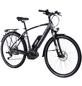 "CHRISSON E-Bike Trekking, 32 "", 10-Gang, 11.1 Ah-Thumbnail"