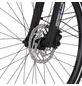 """FISCHER FAHRRAEDER E-Bike Trekking »ETD 1820«, 28"""", 9-Gang, 11.6 Ah-Thumbnail"""