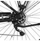 """FISCHER FAHRRAEDER E-Bike Trekking »ETD 1861.1«, 28"""", 10-Gang, 11.6 Ah-Thumbnail"""