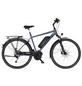 "FISCHER FAHRRAEDER E-Bike Trekking »ETH 1820«, 28"", 9-Gang, 11.6 Ah, Diamant-Thumbnail"