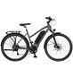 "PROPHETE E-Bike Trekking Graphitfarben|schwarz_glaenzend 28 "", 8-gang,-Thumbnail"