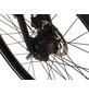 """PROPHETE E-Bike Trekking »Urbanicer 21.EMU.10«, 28"""", 8-Gang, 7 Ah, Diamant-Thumbnail"""