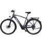 """FISCHER FAHRRAEDER E-Bike Trekking »Viator 5.0i«, 28 """", 10-Gang, 11.6 Ah-Thumbnail"""