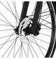 """FISCHER FAHRRAEDER E-Bike Trekking »VIATOR 6.0i«, 28"""", 10-Gang, 14 Ah-Thumbnail"""