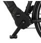 "FISCHER FAHRRAEDER E-Bike Trekking »VIATOR 6.0i«, 28"", 10-Gang, 14 Ah, Diamant-Thumbnail"
